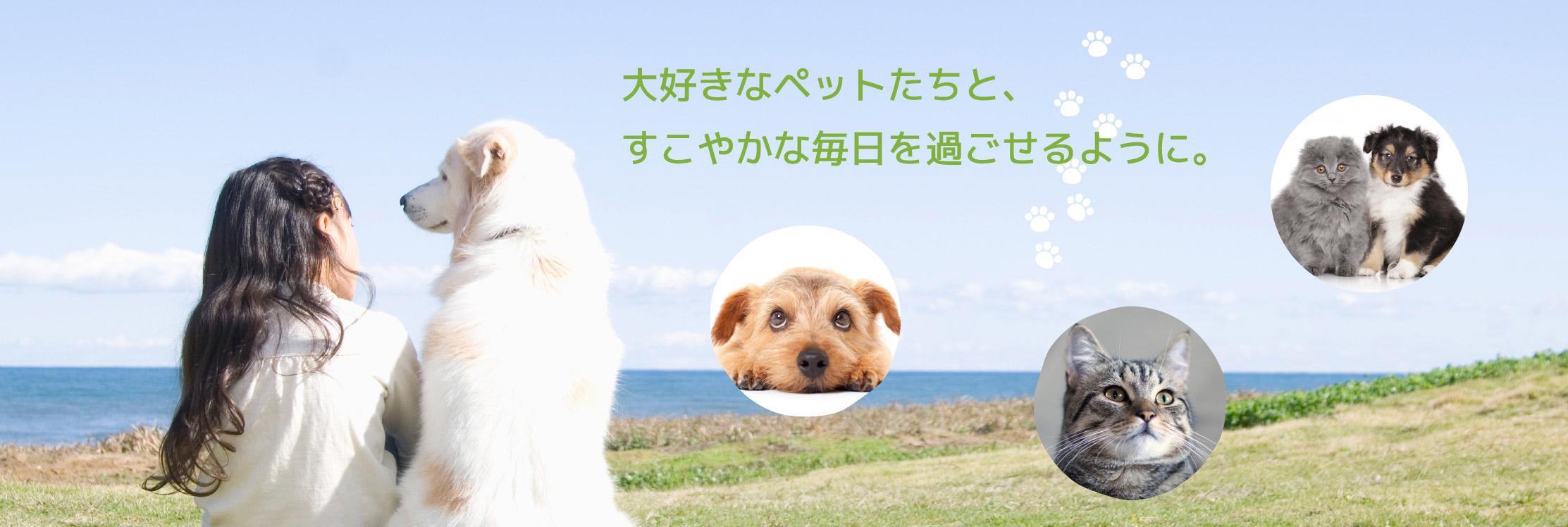 東福岡たぬま動物病院